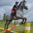 Stock Photo: Horse jumping