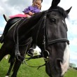 Little girl on a horse — Stock Photo