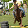 Horse jumping — Stock Photo #10587569
