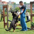 Dog training — Stock Photo #10608243