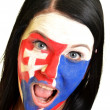 Slovakian fan — Stock Photo