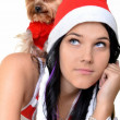 Pretty girl and dog in santa hat at Christmas — Stock Photo #8044043