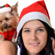 Pretty girl and dog in santa hat at Christmas — Stock Photo