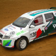 Vehicle in the Rally — Lizenzfreies Foto