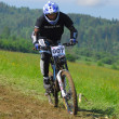 Professional bicycle downhill final competition — Stockfoto