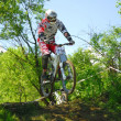 Downhill competition — Stockfoto