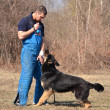 German shepherd - dog at a dog training center — Stock Photo #9639840