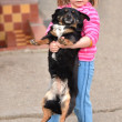 Little girl with a dog — Stock Photo #9800367