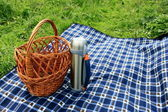 Basket, thermos and picnic blanket — Stock Photo