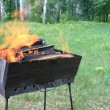 Burning wood in a brazier — Stock Photo