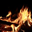 A bright fire on a black background — Stock Photo
