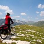 Woman with mountain bike — Stock Photo #8753519