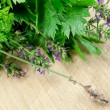 Herbs on chopping board closeup — Stock Photo