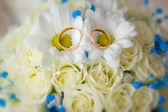 Wedding rings on the bride's bouquet close-up — Stock Photo