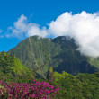 Stock Photo: Tahiti island