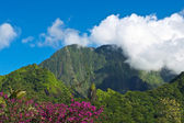 Tahiti island — Stock Photo