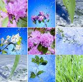 春の新生活 — ストック写真