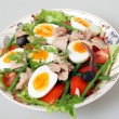 Nicoise salad serving bowl — Stock Photo #10111398