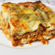 Lasagne verde slice — Stock Photo