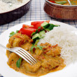 South Indian chicken curry table — Stock Photo