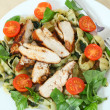 Grilled chicken and pasta salad high angle — Stock Photo #8819231