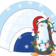 Penguin Christmas — Stock Vector