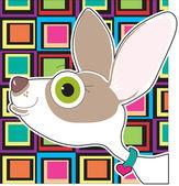 Chihuahua portret — Stockvector