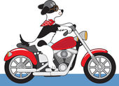 Dog Motorcycle — Stock Vector