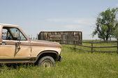 Auto a erba — Foto Stock