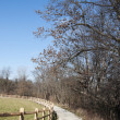 Trail through Vineyard in Ohio — Stock Photo #8285980