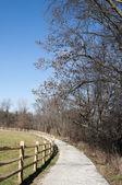 Trail through Vineyard in Ohio — Stock Photo