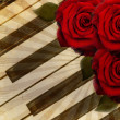 Music background with roses — Foto Stock