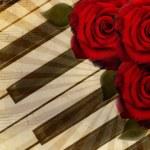 Fondo de música con rosas — Foto de Stock   #9454665