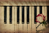 Music background with rose — Stock Photo