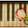 Music background with rose — Foto de Stock