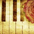 Music background with rose — Foto Stock