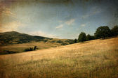Old photo of landspace — Stockfoto