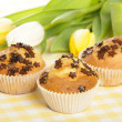 Home baked muffins — Stock Photo