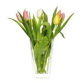 Tulips in vase — Stock Photo