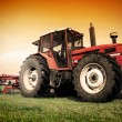 Old tractor on the field - Stock Photo