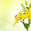 Yellow lily flower — Stock Photo #9440582