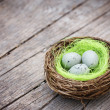 Three little eggs in bird nest — Stock Photo