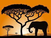 Savannah - elefant. — Stockvektor