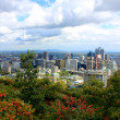 View of Montreal from Mount Royal — Stock Photo