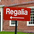 RegaliSign at Harvard University Graduation — Stock Photo #10466088