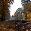 Fall Landscape with Railroad Tracks and a Signal in the Distance — Stock Photo