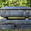 Stone Casket at Cemetery — Foto Stock #9035026