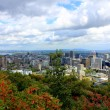 Montreal City Panorama from Mt Royal — Stock Photo