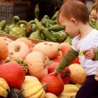 Stock Photo: Child Touch Pumpkin