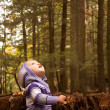 Child Woods Look Up — Stock Photo #8962428